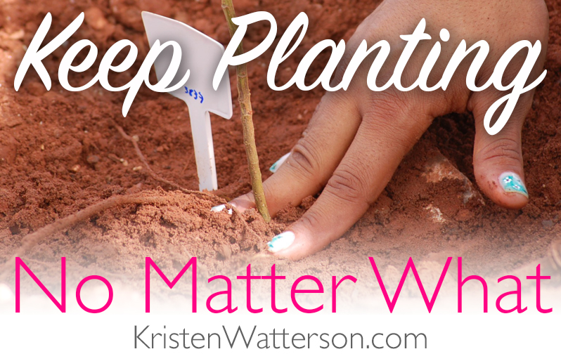 Keep Planting, No Matter What.